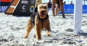 130802_smart_beach_tour_ording_049