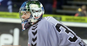 131020_hamburg_freezers_straubing_tigers_008