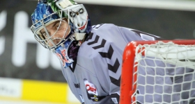 131020_hamburg_freezers_straubing_tigers_009