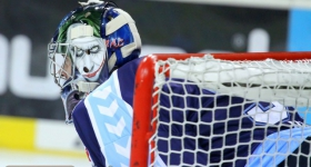 131020_hamburg_freezers_straubing_tigers_014
