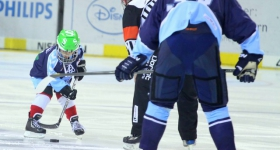 131020_hamburg_freezers_straubing_tigers_015