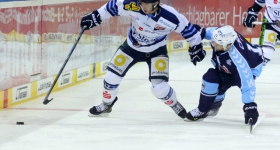 131020_hamburg_freezers_straubing_tigers_016