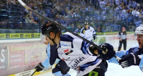 131020_hamburg_freezers_straubing_tigers_018