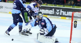 131020_hamburg_freezers_straubing_tigers_019