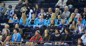 131020_hamburg_freezers_straubing_tigers_026