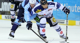 131020_hamburg_freezers_straubing_tigers_028