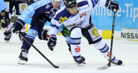 131020_hamburg_freezers_straubing_tigers_029