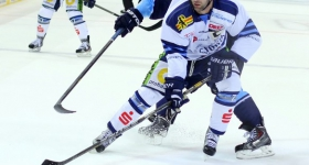 131020_hamburg_freezers_straubing_tigers_038