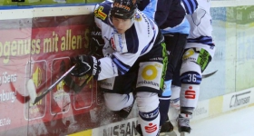 131020_hamburg_freezers_straubing_tigers_041
