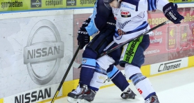 131020_hamburg_freezers_straubing_tigers_057