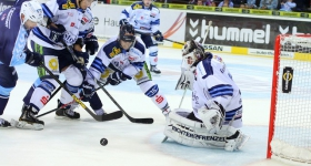 131020_hamburg_freezers_straubing_tigers_058