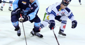 131020_hamburg_freezers_straubing_tigers_076
