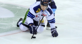 131020_hamburg_freezers_straubing_tigers_080