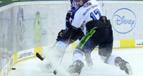 131020_hamburg_freezers_straubing_tigers_091