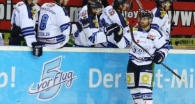 131020_hamburg_freezers_straubing_tigers_092
