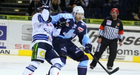 131020_hamburg_freezers_straubing_tigers_097