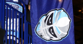 131020_hamburg_freezers_straubing_tigers_107