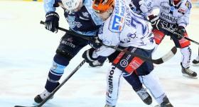 140321_hamburg_freezers_iserlohn_playoffs_029