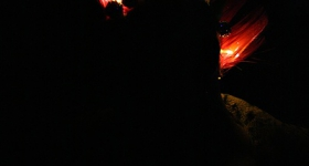 141025_tunnel_club_hamburg_029