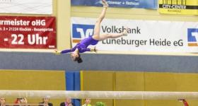 Deutschland-Pokal 2015 Nordheidehalle Buchholz