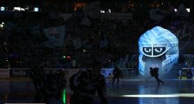 Hamburg Freezers vs. Eisbären Berlin (22.12.2015)