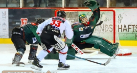 Crocodiles Hamburg vs. ECC Preussen Berlin (11.01.2019)