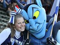 HSV Hamburg Blue Devils Düsseldorf Panther
