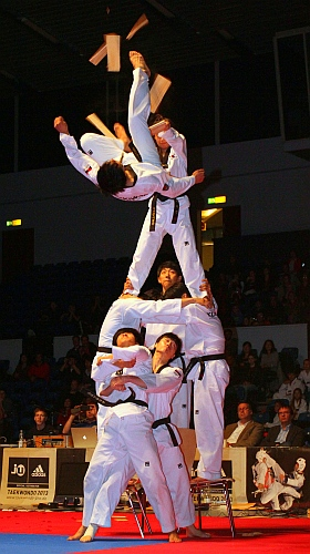 Taekwondo Fight Night in Hamburg