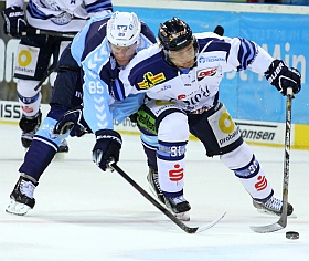 Hamburg Freezers vs. Straubing Tigers