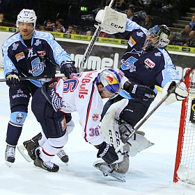 Hamburg Freezers vs. EHC Red Bull München