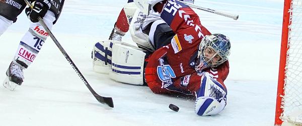 Hamburg Freezers Ingolstadt DEL Eishockey 2014
