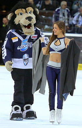 Hamburg Freezers Schwenningen Wild Wings Eishockey DEL 2016