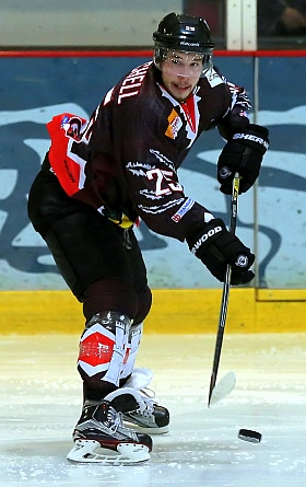 Crocodiles Hamburg Black Dragons Erfurt Eishockey 2016