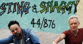 Sting Shaggy 44 876