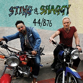 Sting Shaggy 44 876