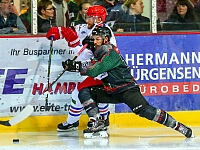 Crocodiles Hamburg Selber Wölfe Eishockey 2018