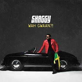 Shaggy Wah Gwaan